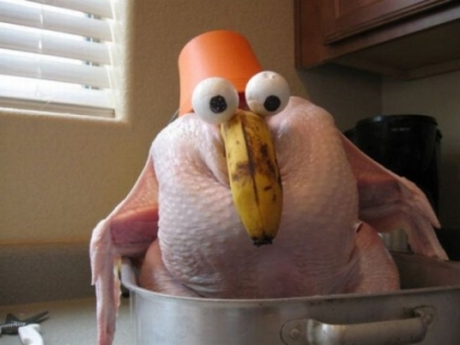 I know, Turkey, it's surprising, but you're gonna get ate, then pooped out. Sorry. Image Source