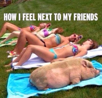 Feeling like a pig next to my friends