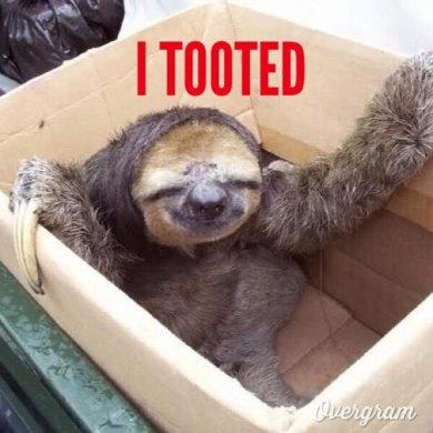sloth-fart